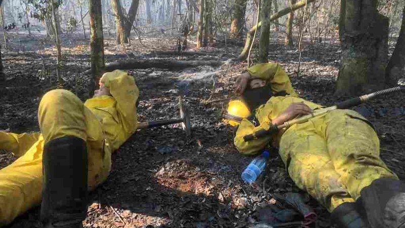 Depois de muito esforço, voluntários descansam em área atingida pelos incêndios - Divulgação